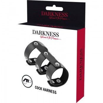 DARKNESS ANILLO DOBLE PENE Y TESTICULOS AJUSTABLE LEATHER